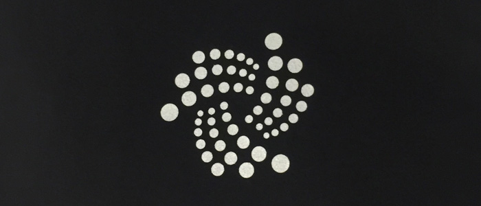 IOTA Logo On Black T-shirt